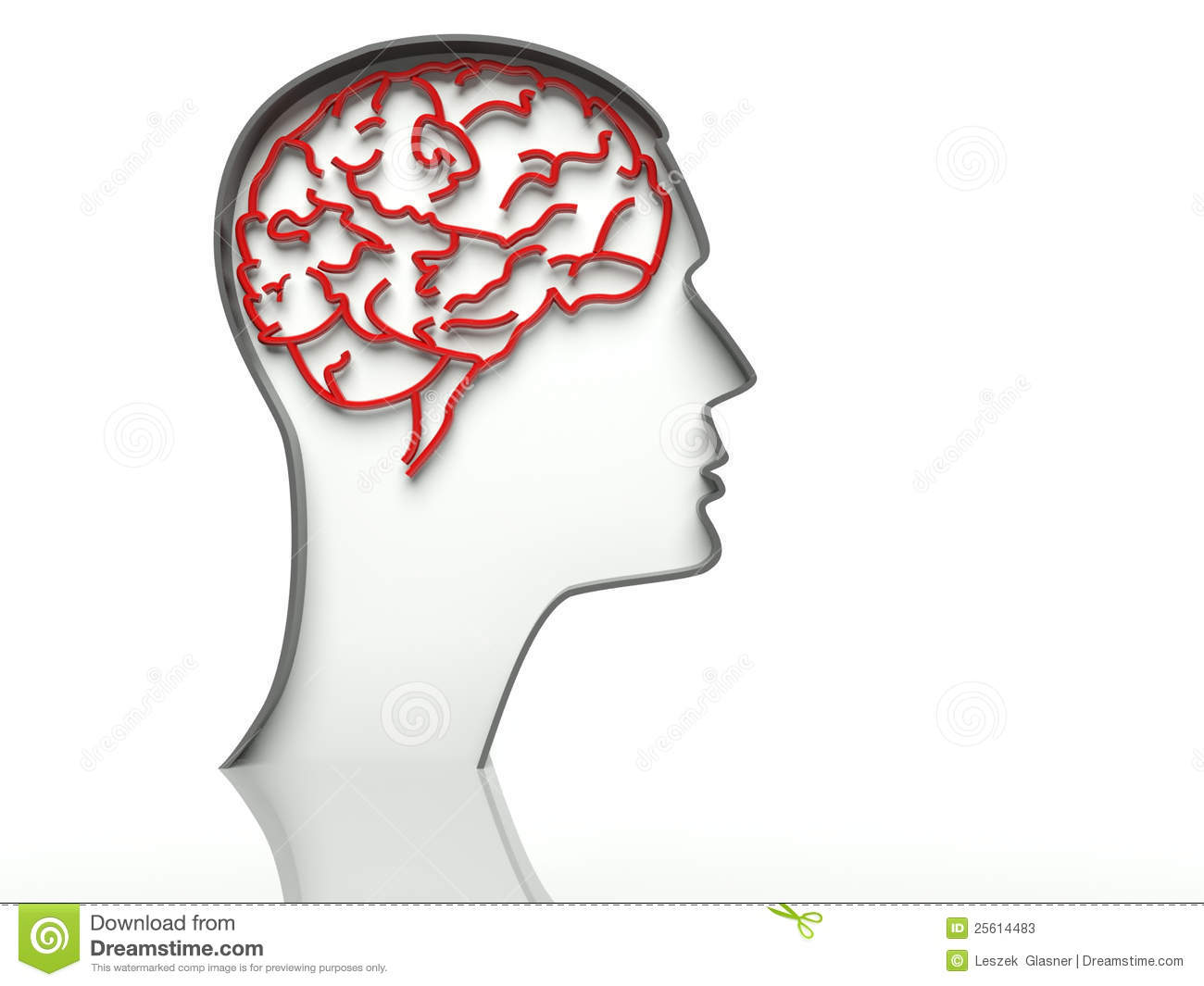 Head with brain on white background, text space