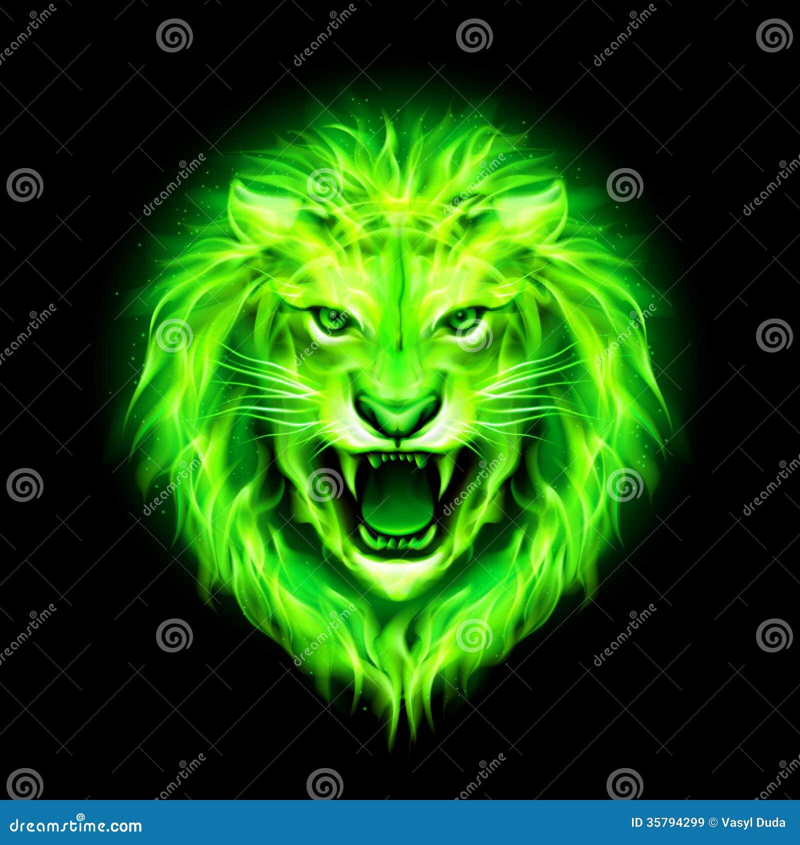 Free Green Flaming Skull Wallpaper