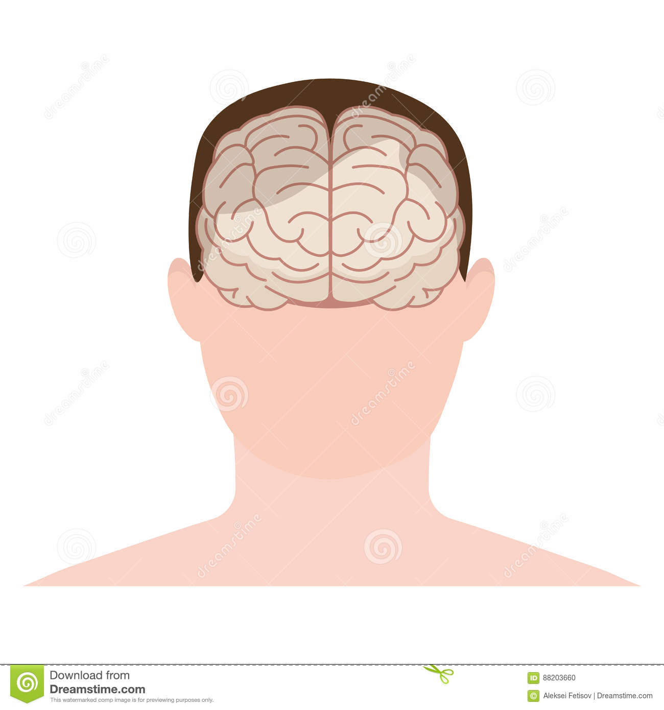 Head human, face and brain in flat style. Vector illustration. F