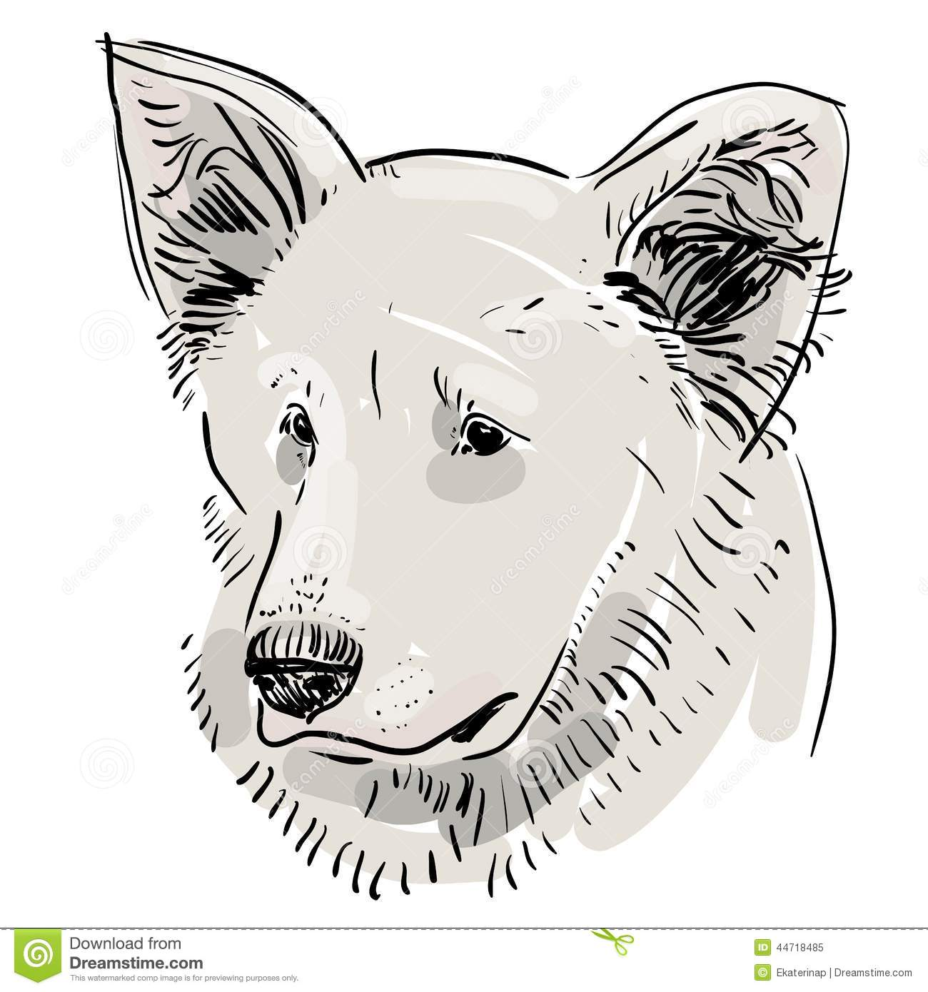 Contour Line Drawing Dog : Head muzzle the dog shepherd sketch drawing black