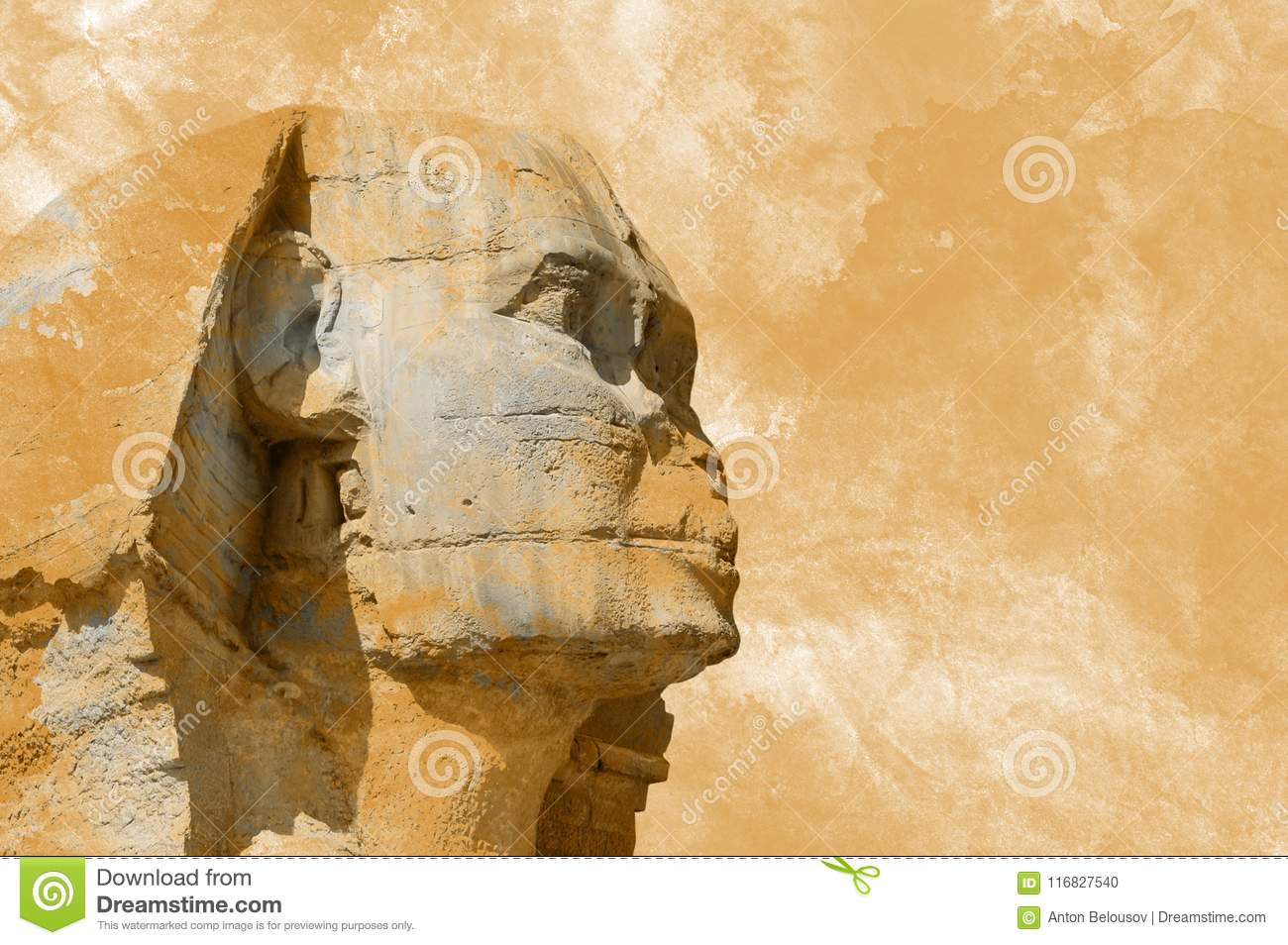 Head Sphinx egyptian aquarelle grunge background