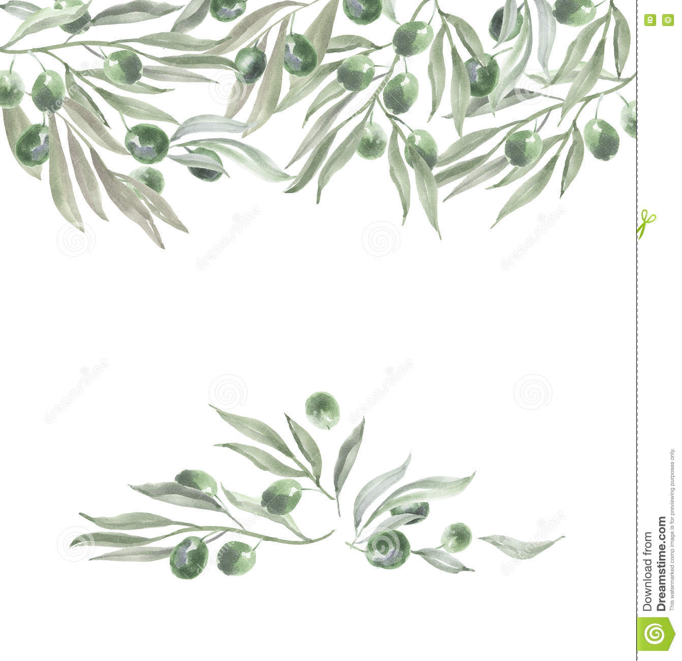 Header Template With Olives And Leaves. Stock Illustration ...