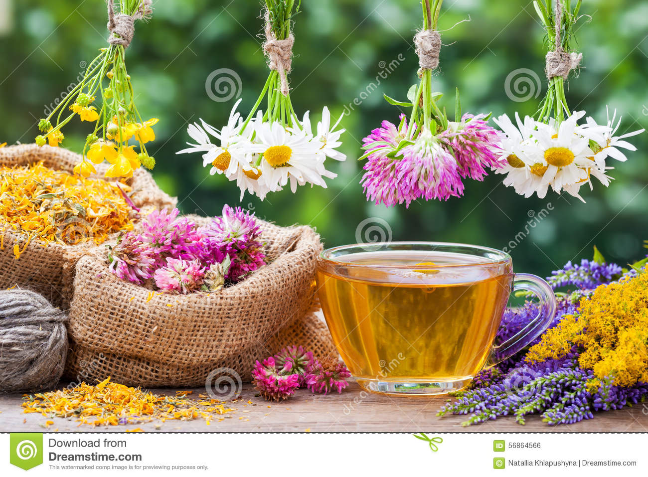 Healing herbs, bags with dried plants and tea cup