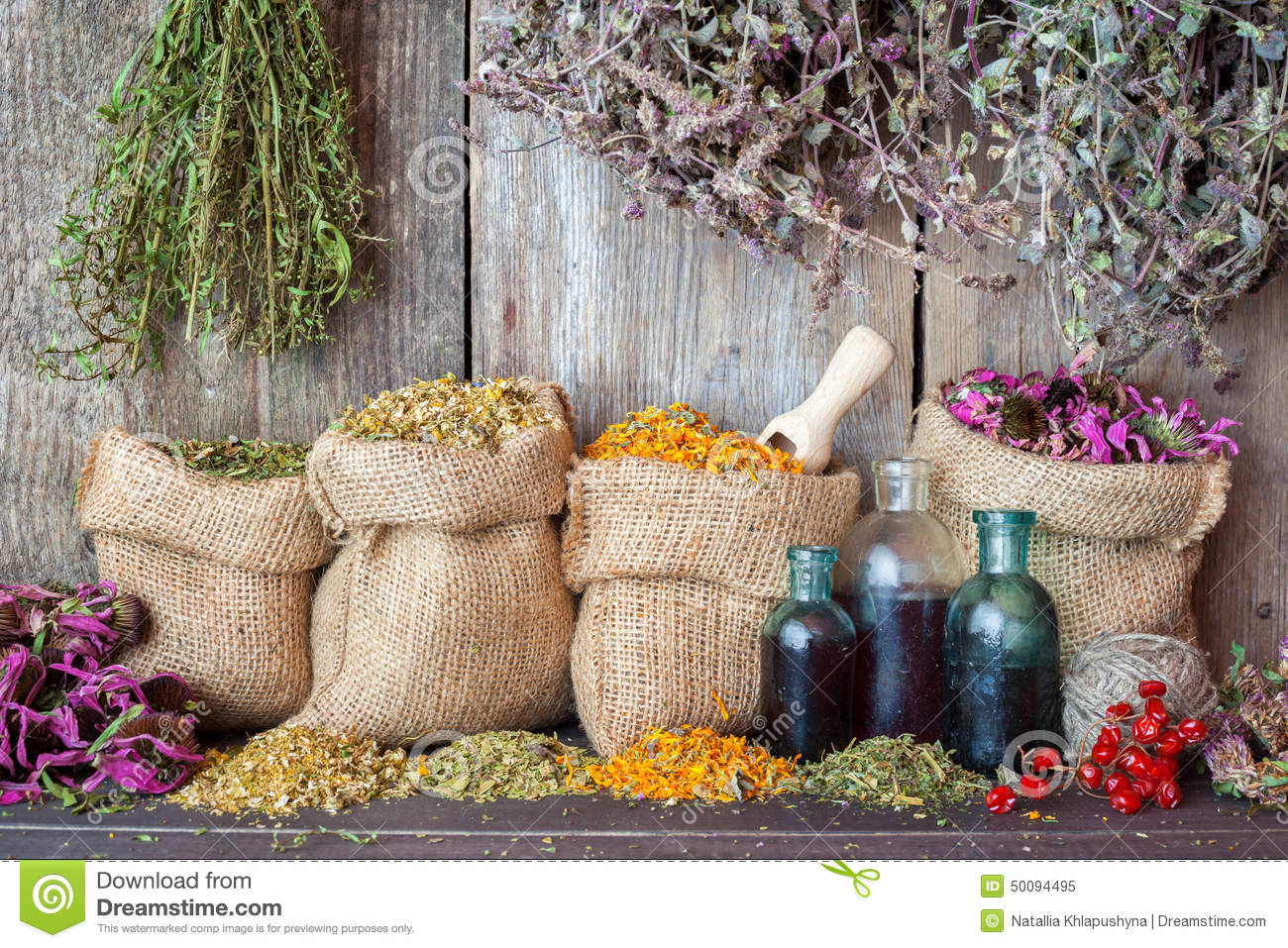 Healing herbs in hessian bags and bottles of essential oil