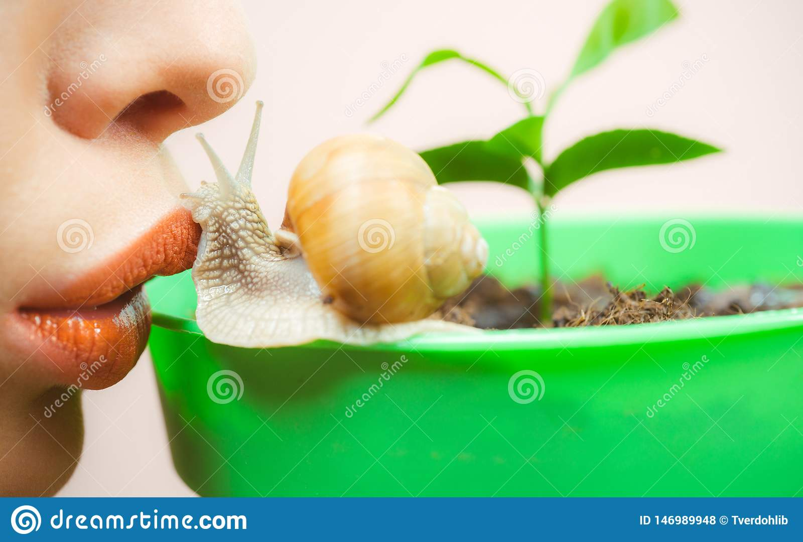 Healing mucus. Having fun with adorable snail. Spa and wellness. Cosmetics and snail mucus. Cosmetology beauty procedure
