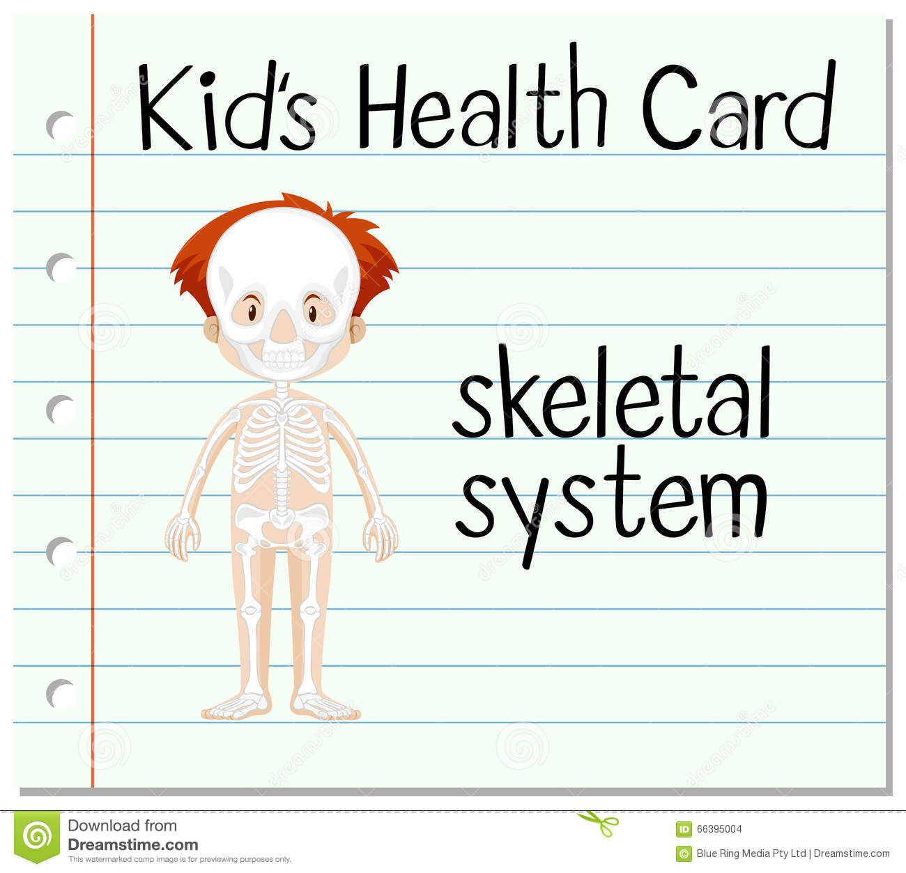 Health Card With Skeletal System Stock Vector Illustration Of