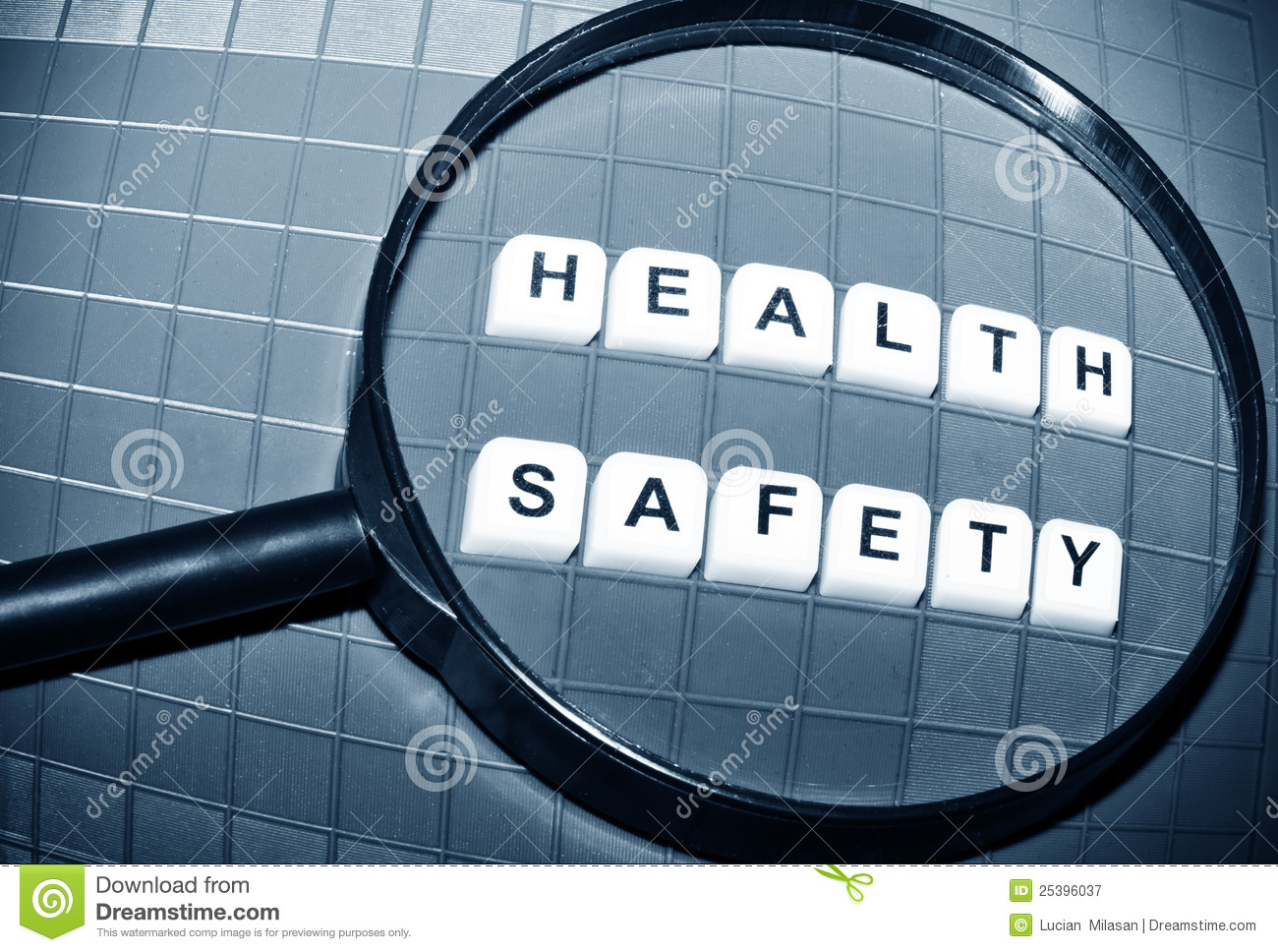 management of occupational health and safety pdf free
