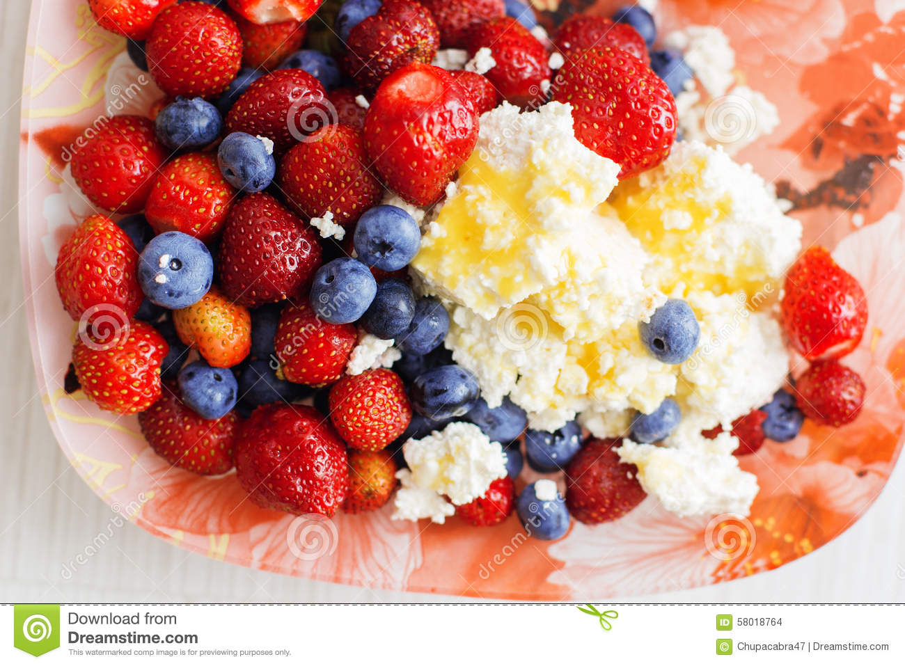 Healthy Breakfast Cottage Cheese With Blueberry Royalty