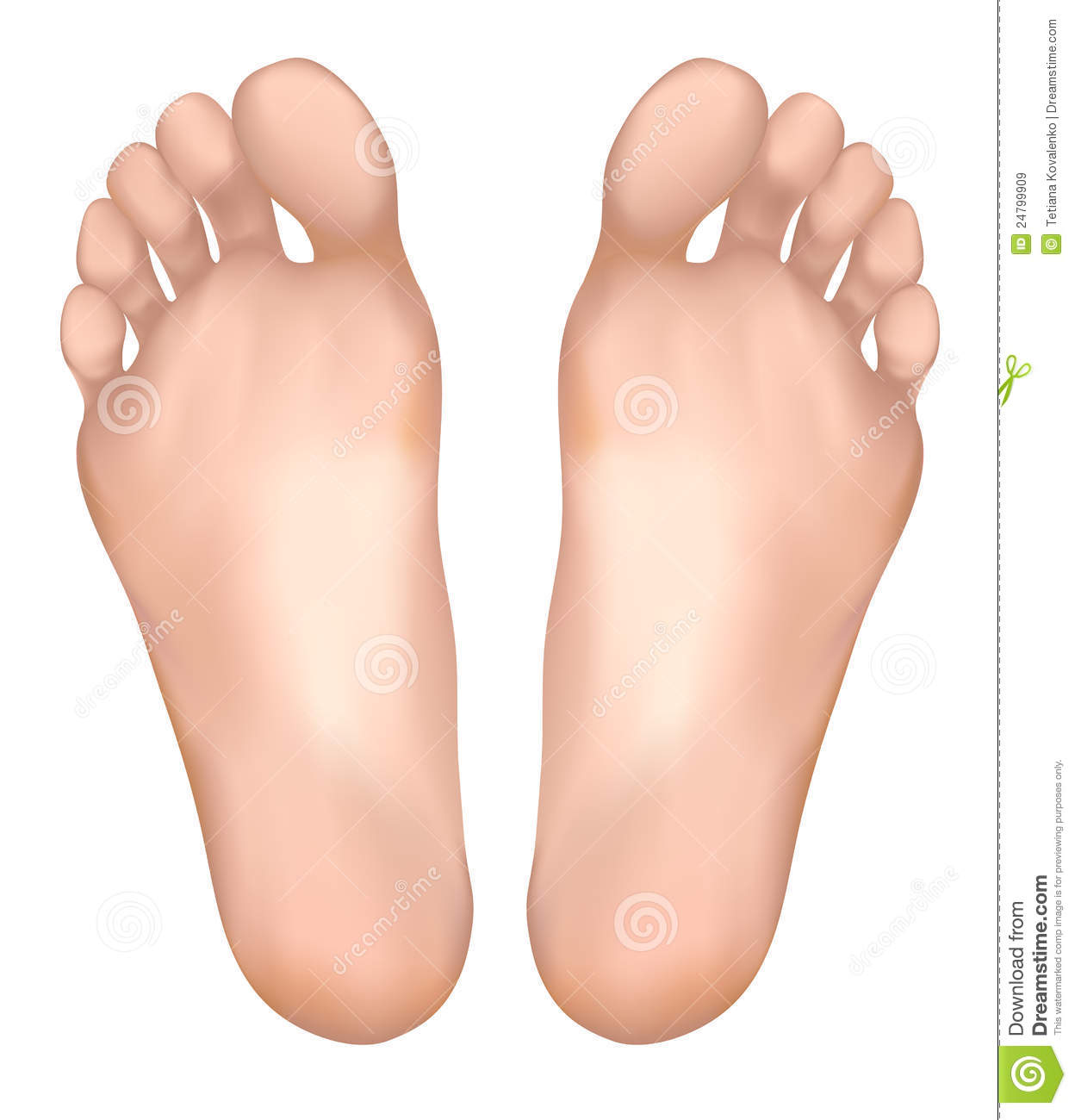 Skin Cream  >> Healthy Feet. Royalty Free Stock Images - Image: 24799909