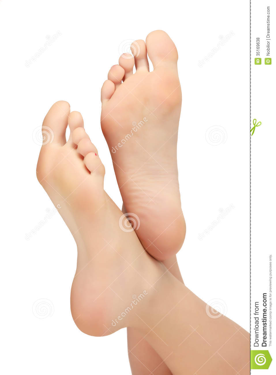 healthy female feet stock photo. image of chiropody, natural - 35169638
