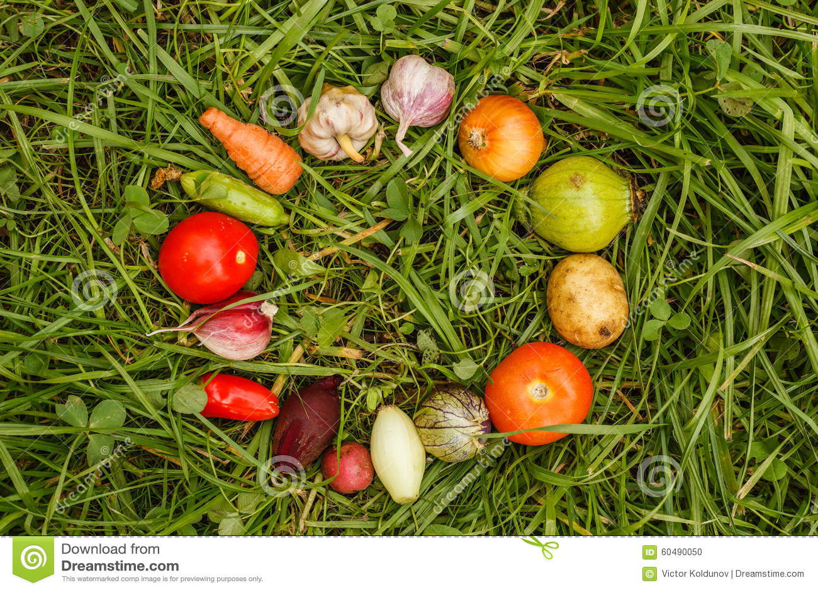 Healthy Harvest Natural Foods