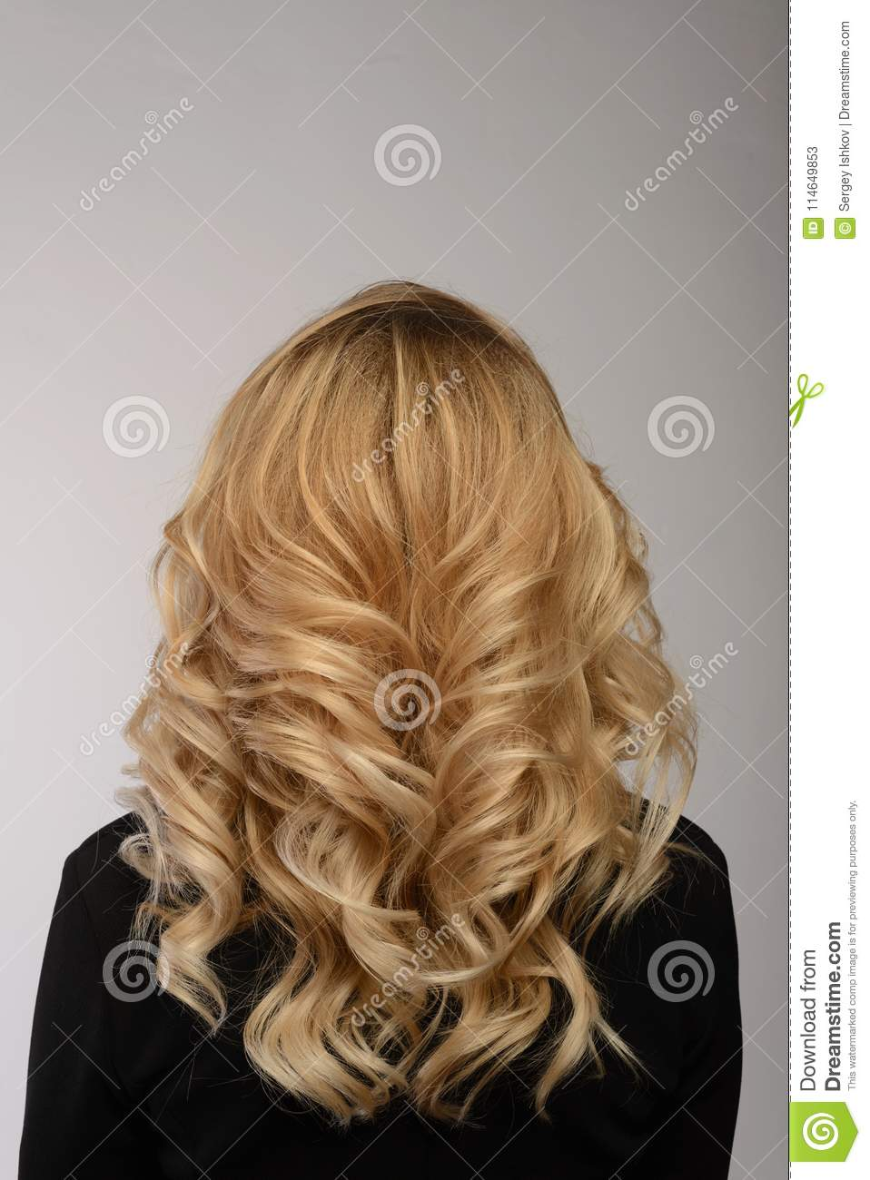 healthy hair. curly long hairstyle. back view of blond hairs