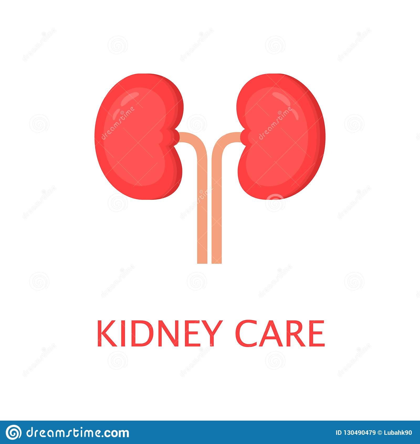 Healthy Kidneys In Flat Style Left And Right Kidney Human Internal Organ Anatomy Concept World Kidney Day Cute Cartoon Vector Stock Vector Illustration Of Happy Bean 130490479