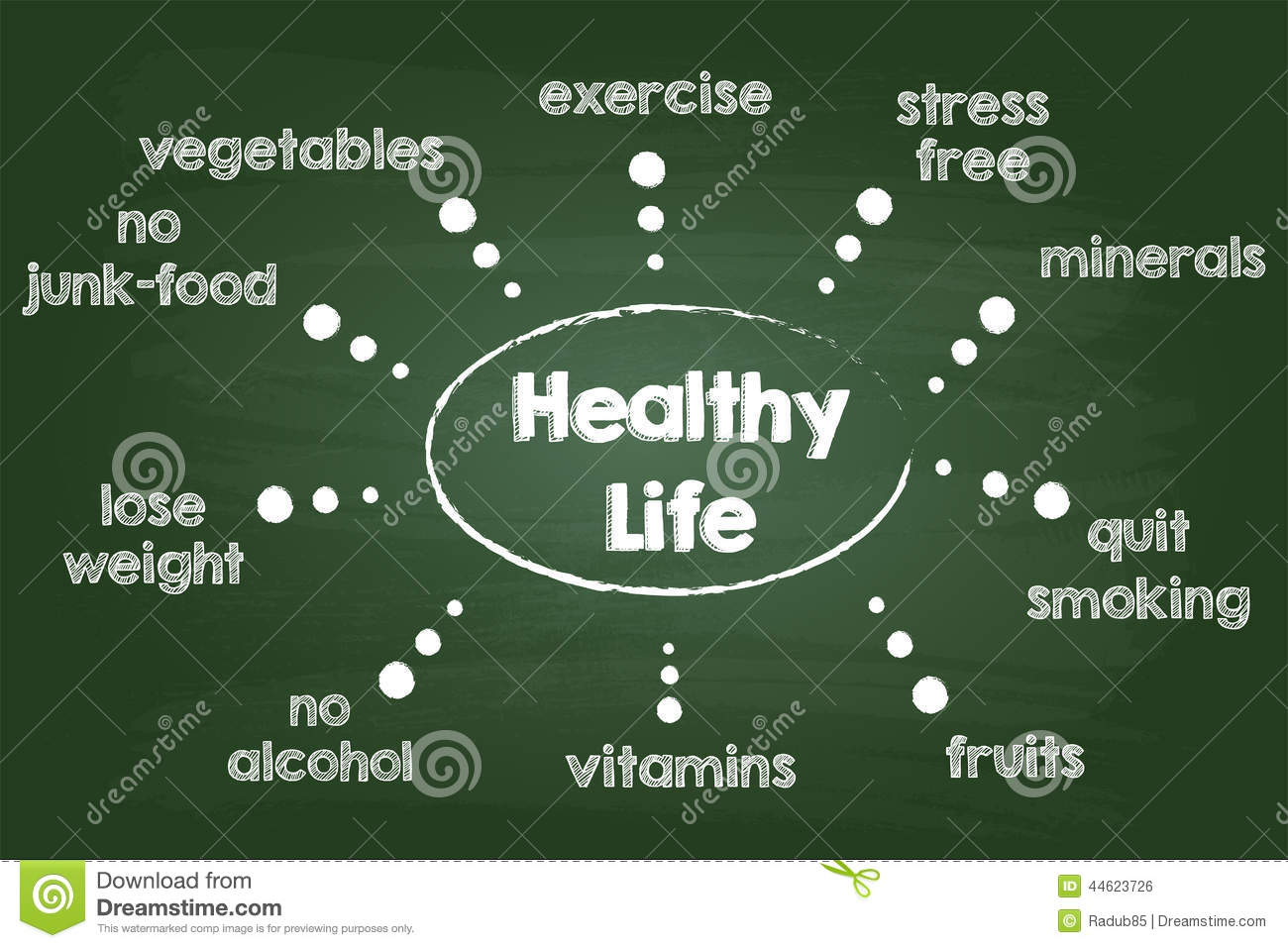 Healthy Lifestyle Chart Stock Vector  Image Of Healthy