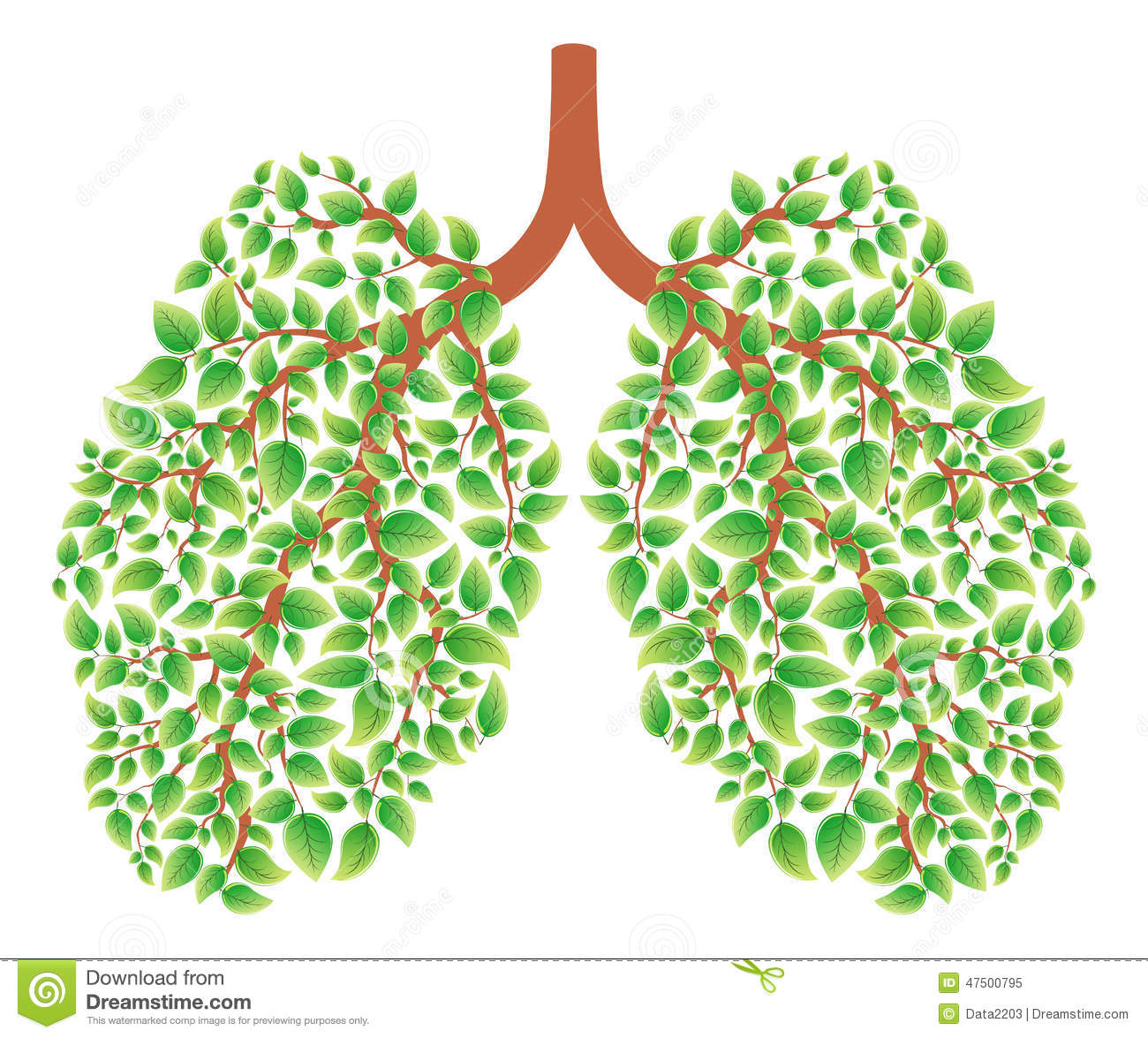 Vector illustration of healthy lungs consisting of green leaves.