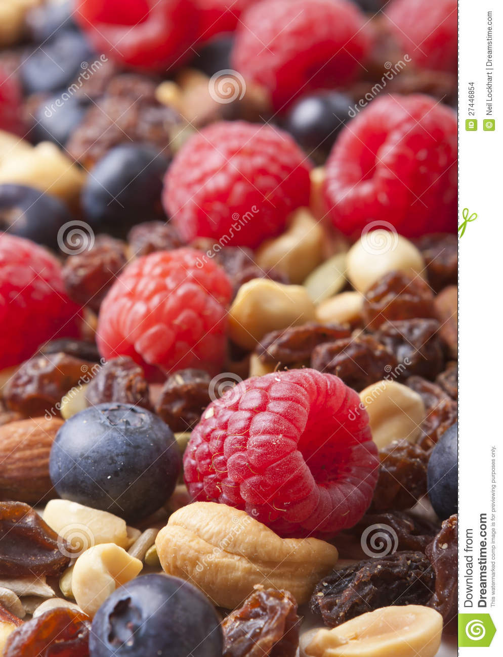 Healthy Nuts and Berries stock photo. Image of depth ...