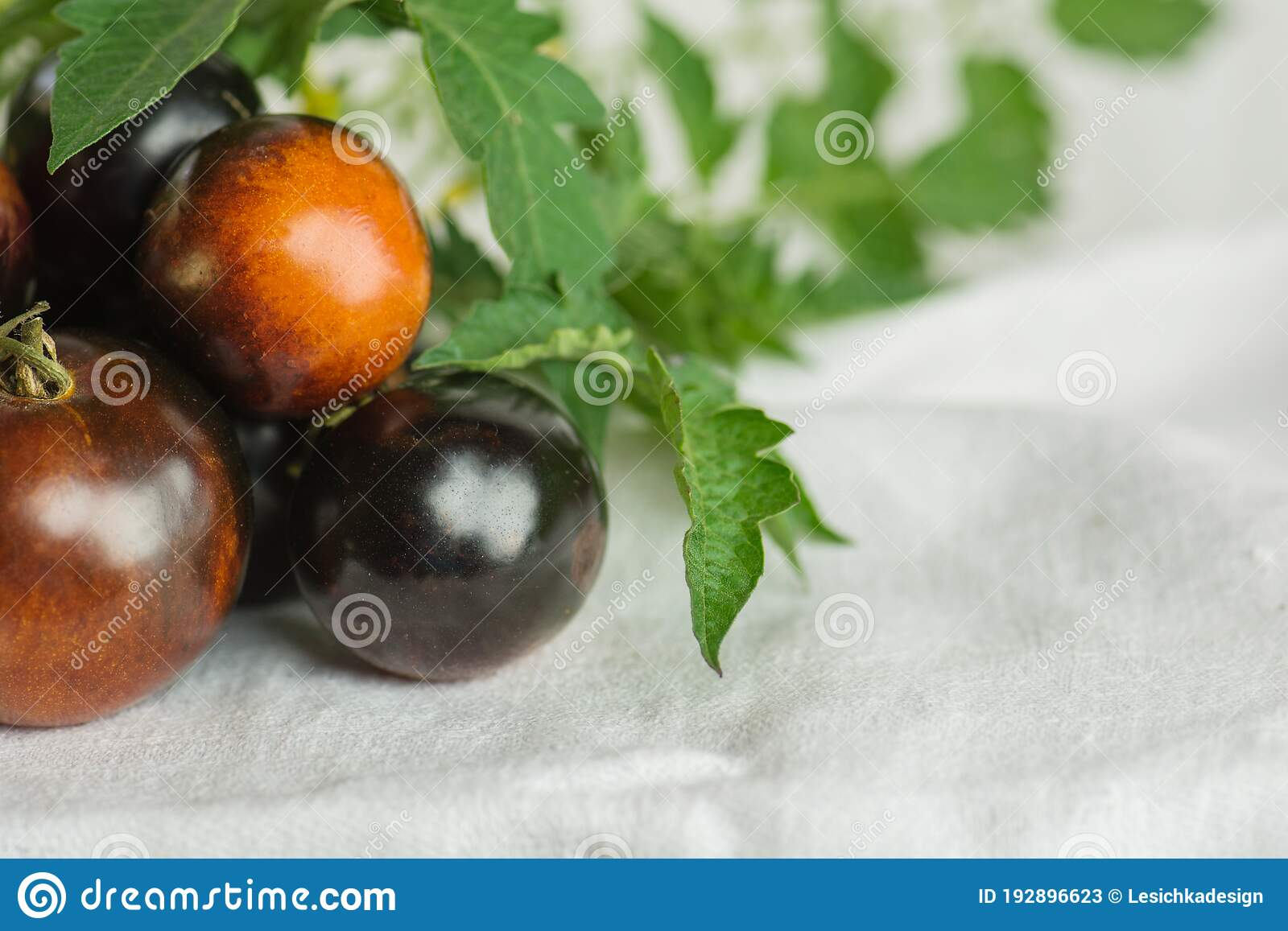 Tomato Bosque Blue Photos Free Royalty Free Stock Photos From Dreamstime