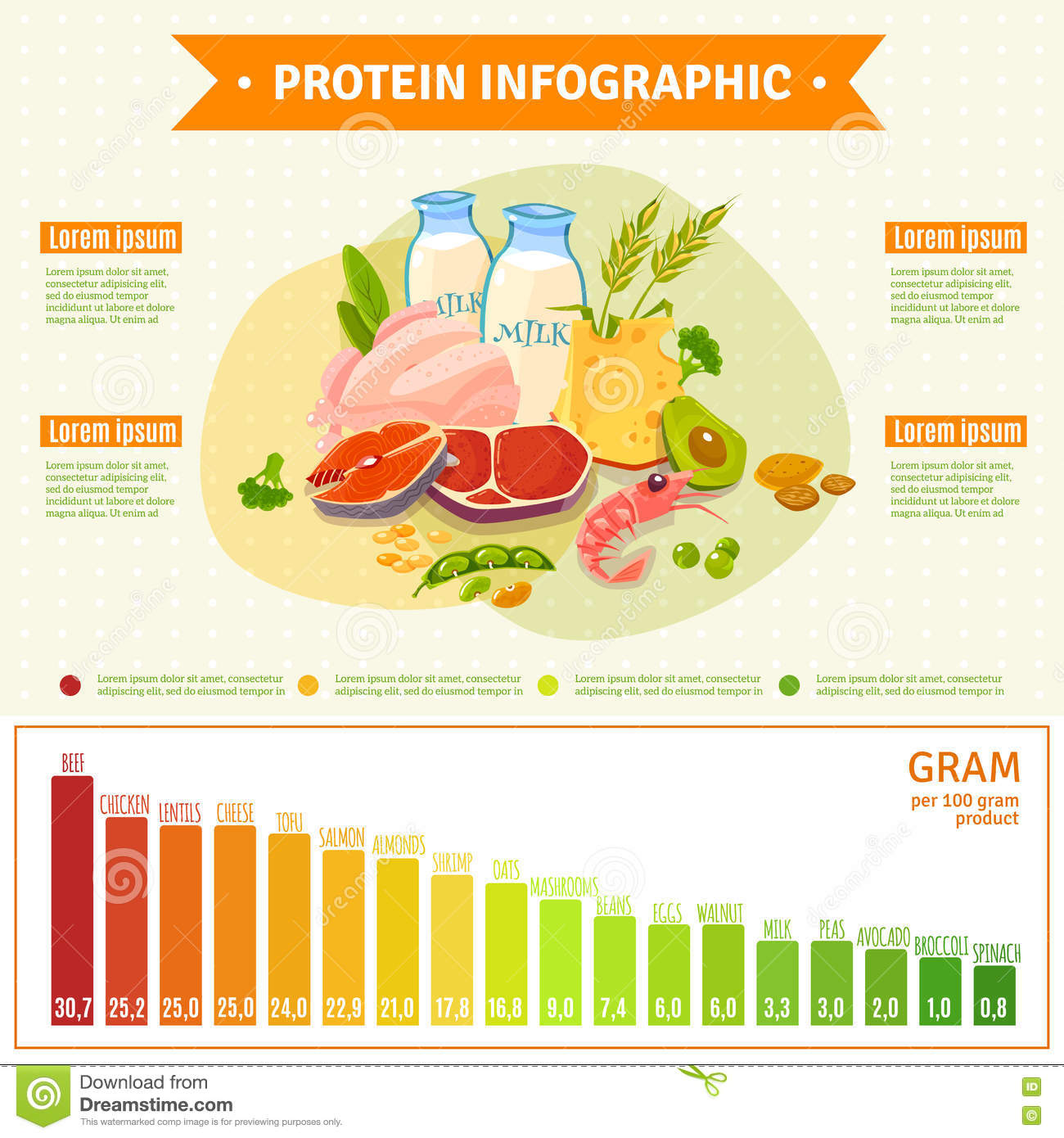 healthy protein food infographic flat poster stock vector