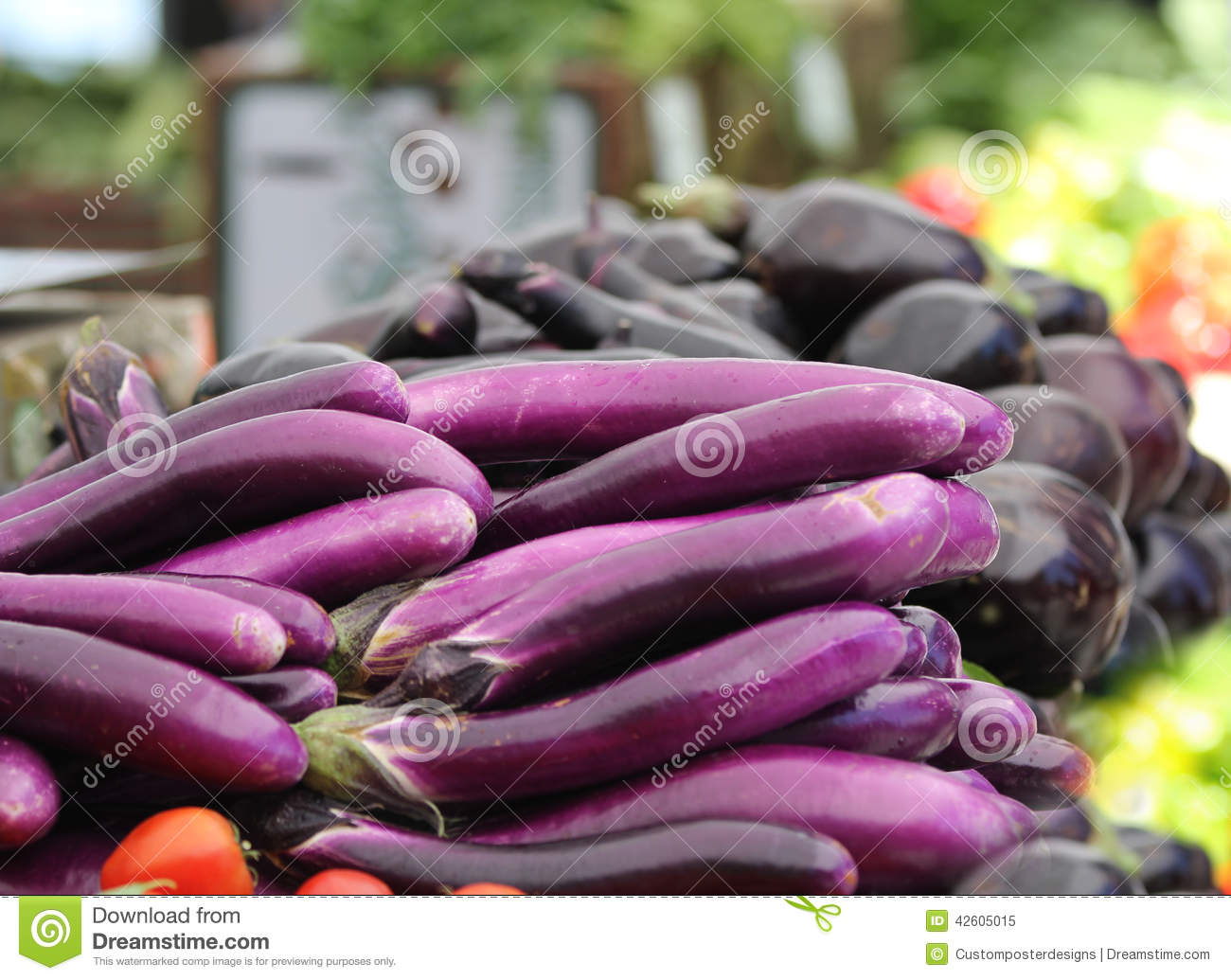 Download Healthy purple eggplant. stock image. Image of colors - 42605015
