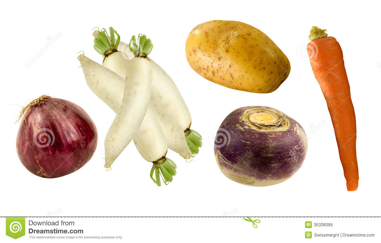 Name Vegetable Root: Healthy Root Vegetables Stock Image. Image Of Delicious