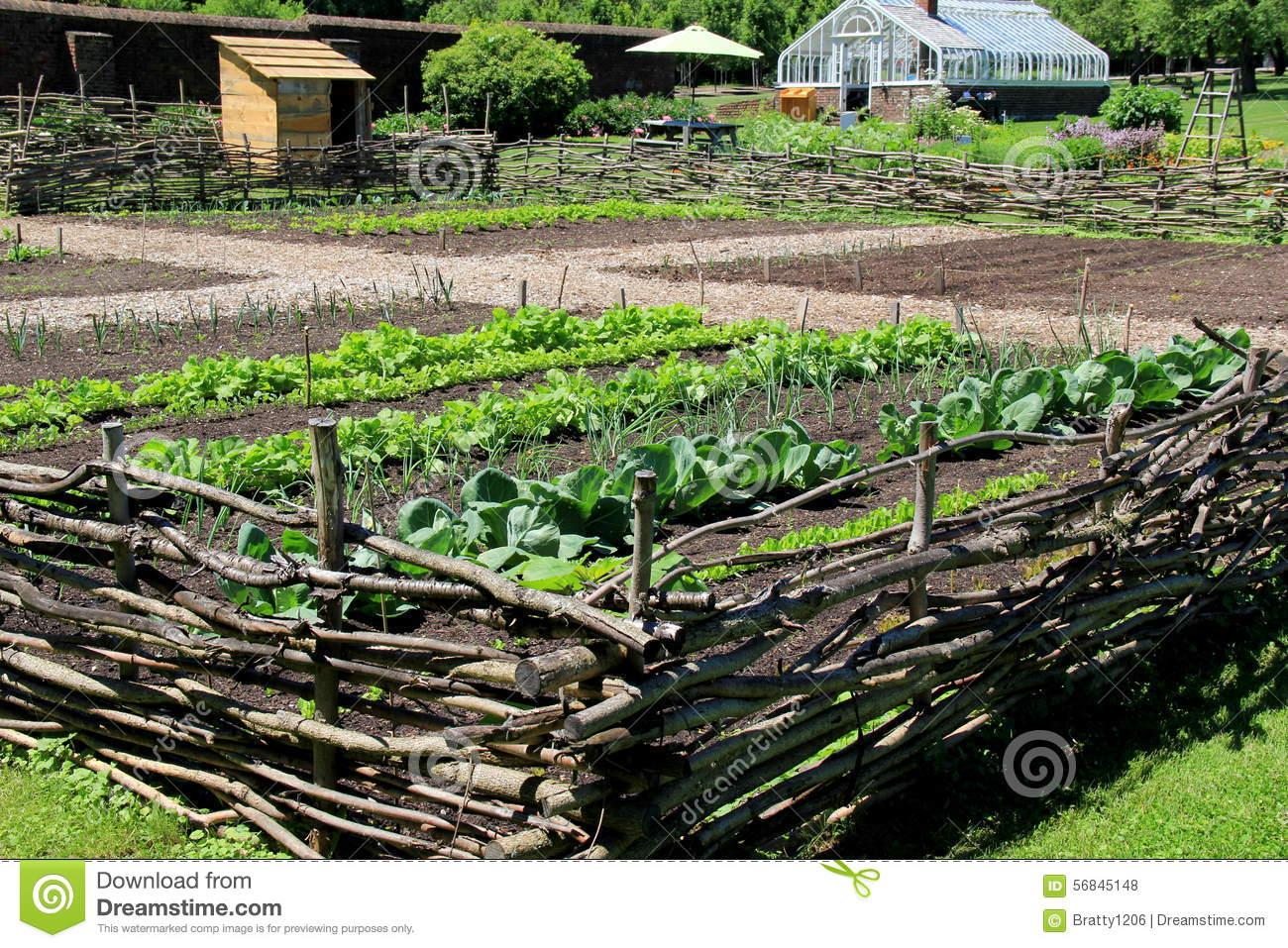 Healthy Vegetables In Wood Fencing Enclosure Garrison Gardens