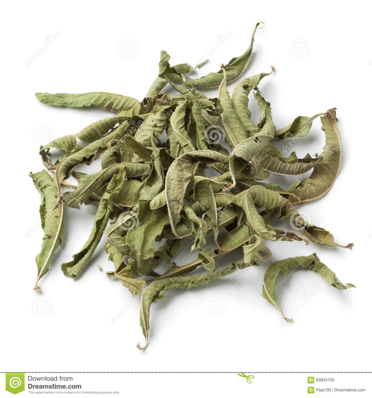 Heap Of Dried Vervain Leaves Stock Image - Image of herbal, medicine