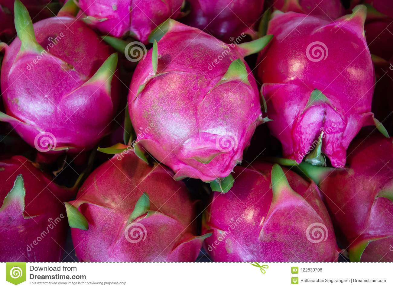 Heap Of Organic Red Dragonfruit Type Of Tropical Fresh Fruits Stock