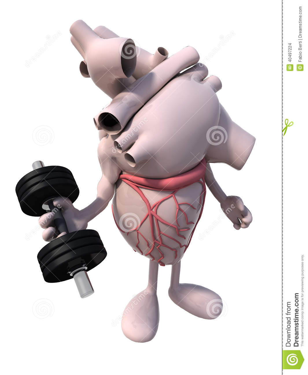 Heart With Arms And Legs Does Weight Training Stock