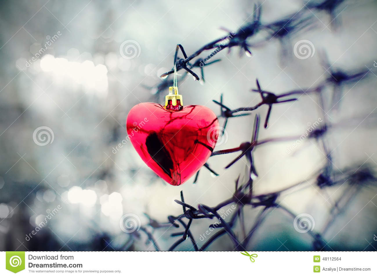 Heart and barbed wire
