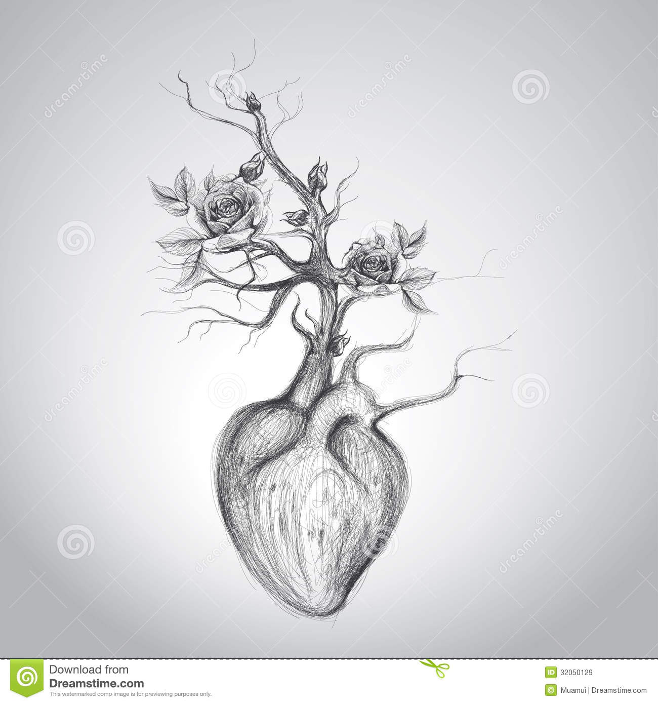 The Heart Is In Blossom Royalty Free Stock Images - Image ... | 1300 x 1390 jpeg 145kB