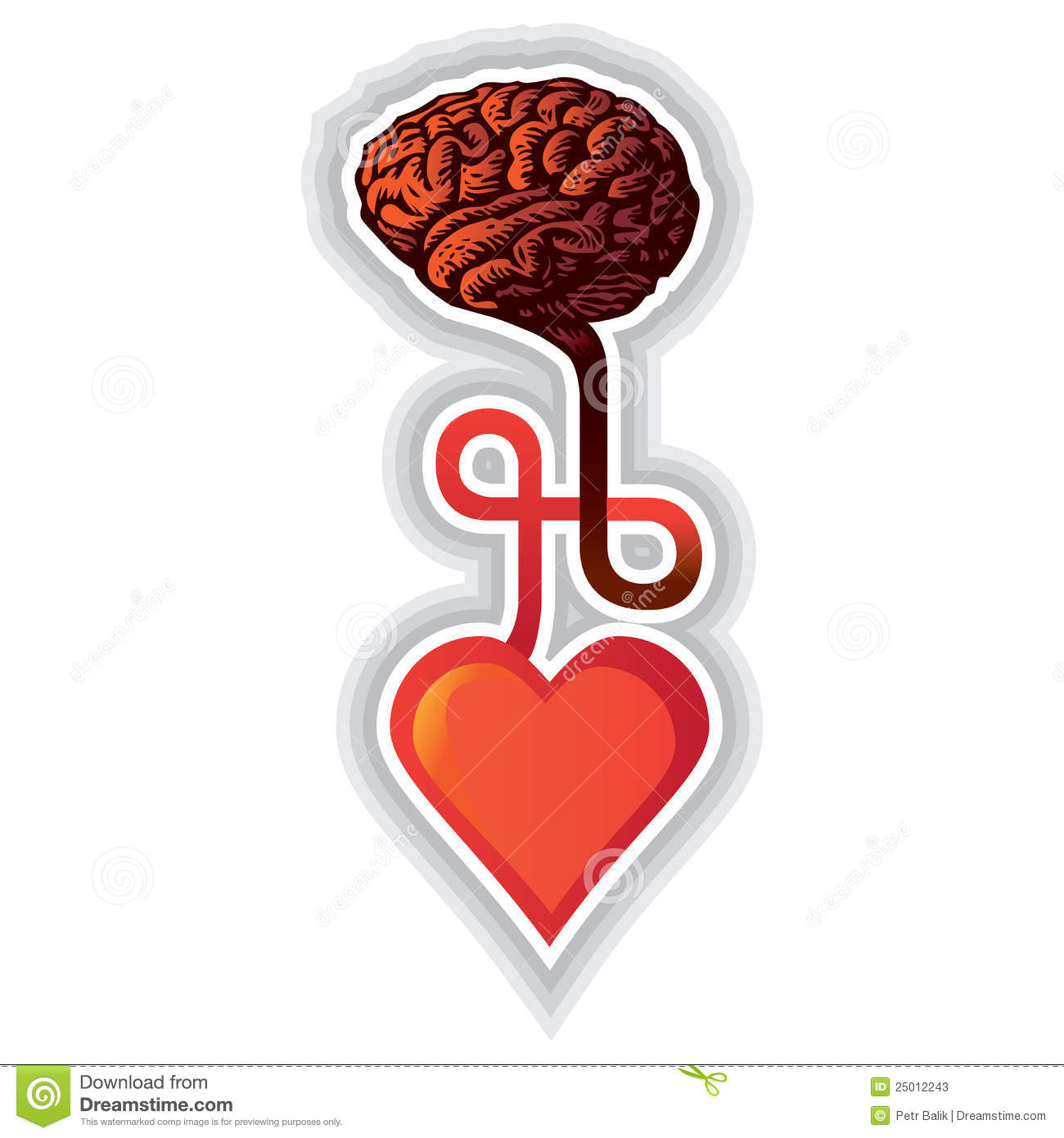 Connection between heart and brain - illustration.