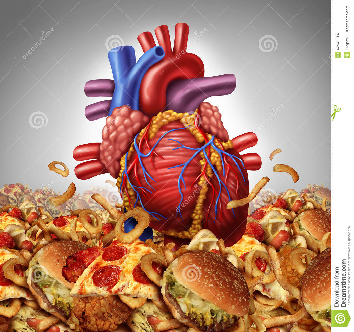 Fast Food And Cholesterol
