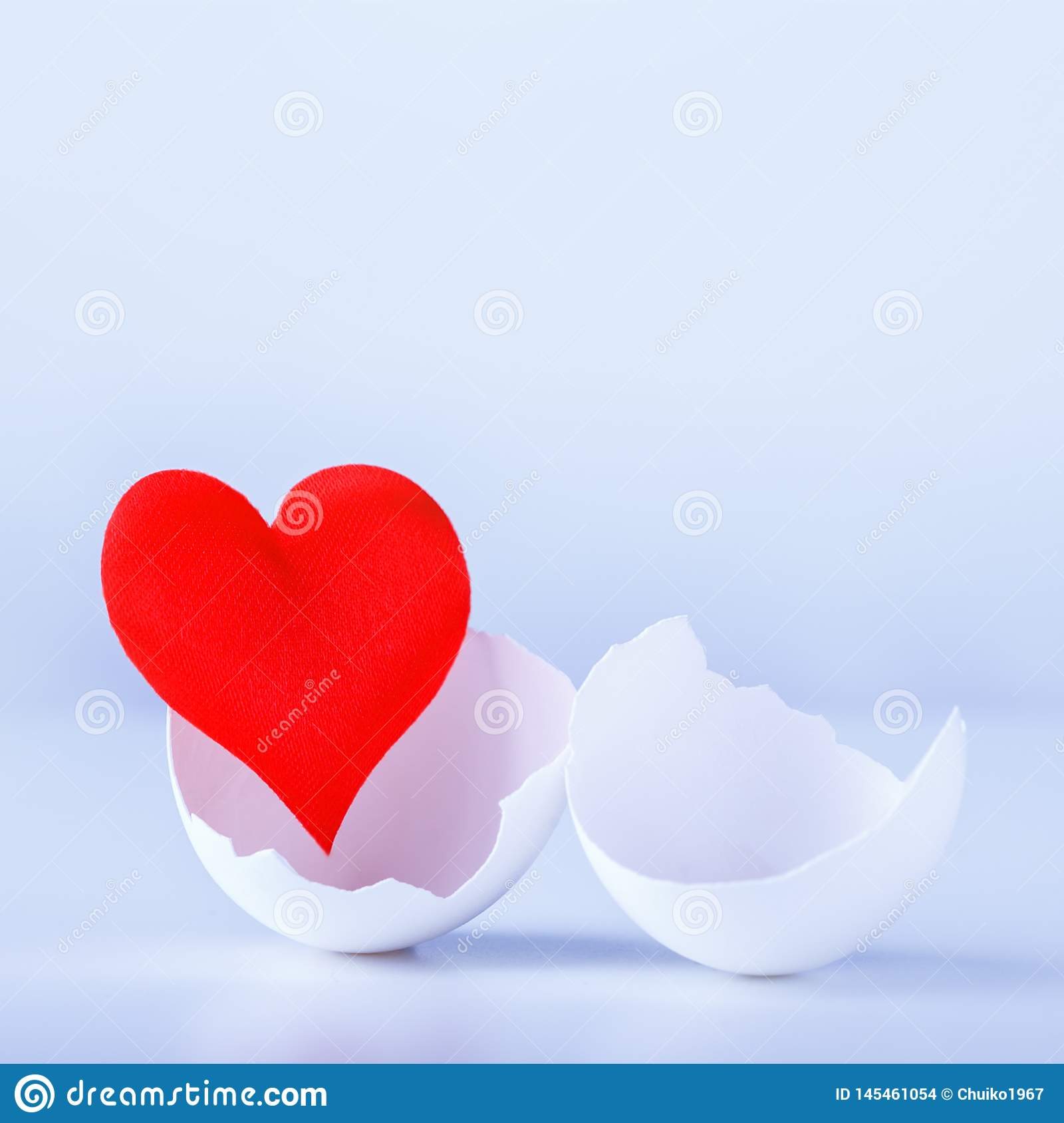 Heart in an egg shell on a white background. Symbol birth new life.