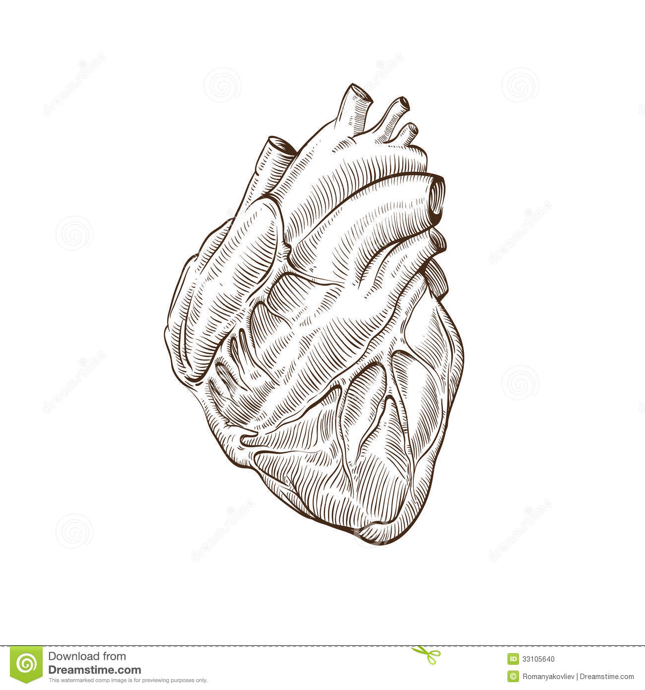 Heart Hand Drawn Isolated On A White Backgrounds Stock