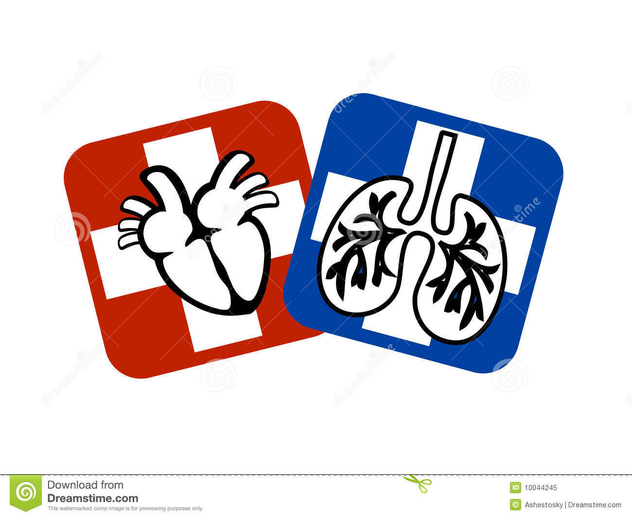 Heart and lungs prevention stock vector. Illustration of ...
