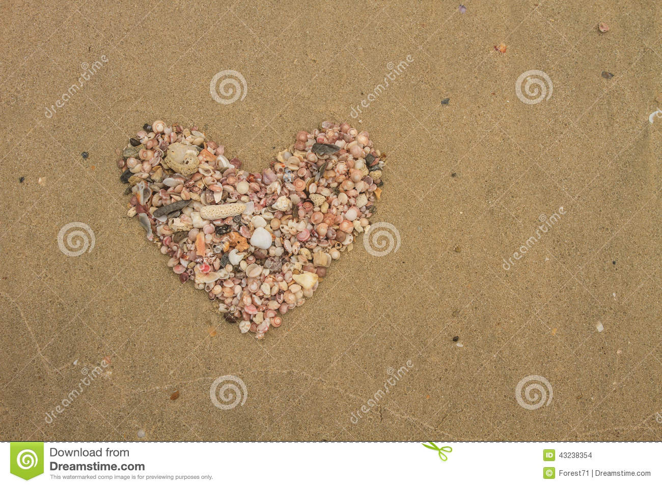 Heart made of sea shells lying on a beach sand stock photo for What are shells made of