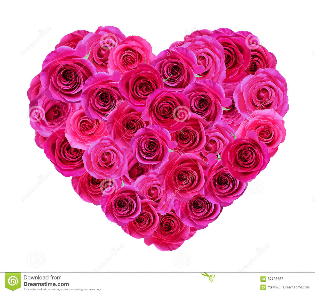 Heart of roses stock image image of love flower romantic 57725657 heart rose red love rose flower shape white isolated petal nature romantic bouquet floral fresh bunch present background beautiful decoration symbol blossom izmirmasajfo