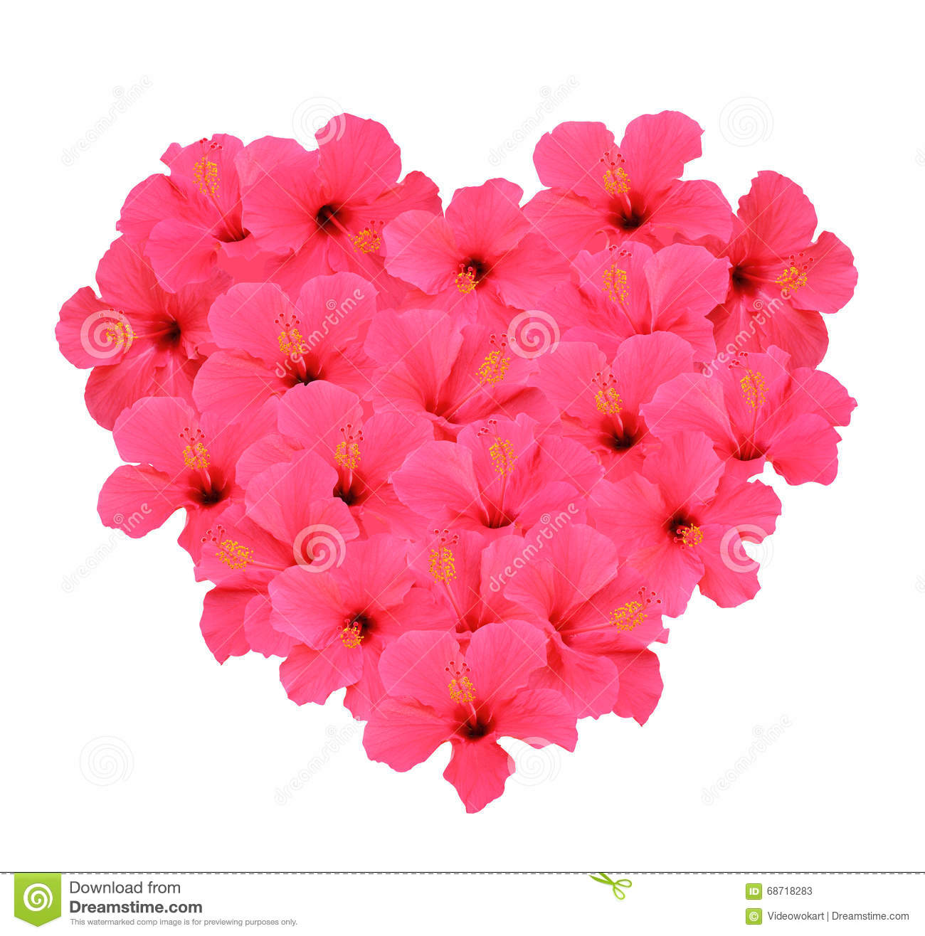 Heart shape bouquet made of hibiscus flowers isolated on white heart shape bouquet made of hibiscus flowers isolated on white background izmirmasajfo