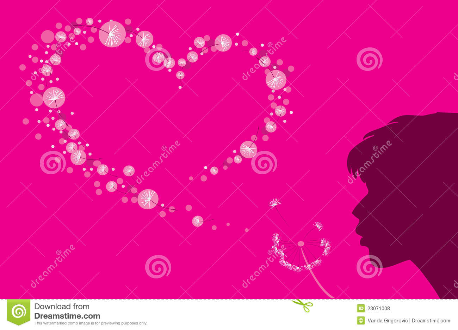 Heart shape of dandelion fluff