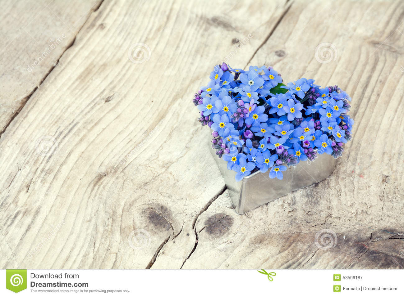 Heart Shape With Forget Me Not Flowers On Rustic Wood Stock Photo Image 53506187