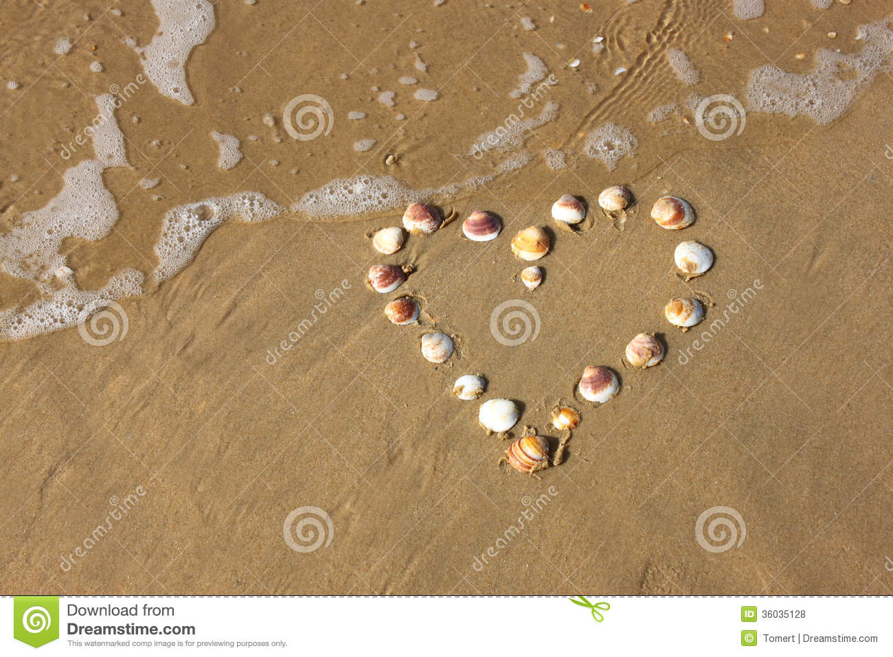 Heart shape made from sea shells on sandy beach room for for What are shells made of