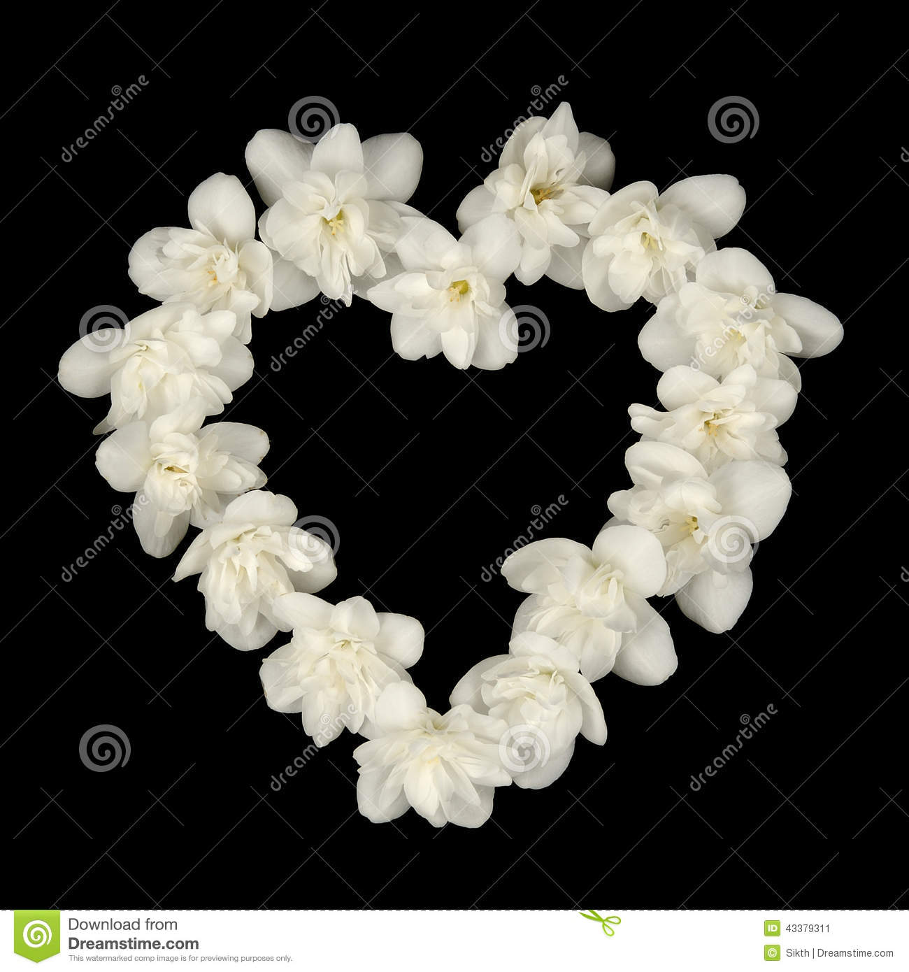 Jasmine Heart Stock Illustration Illustration Of Beautiful 9722313
