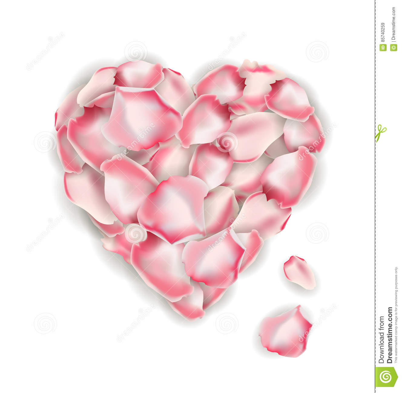 heart shape of pink rose petals isolated on a white background