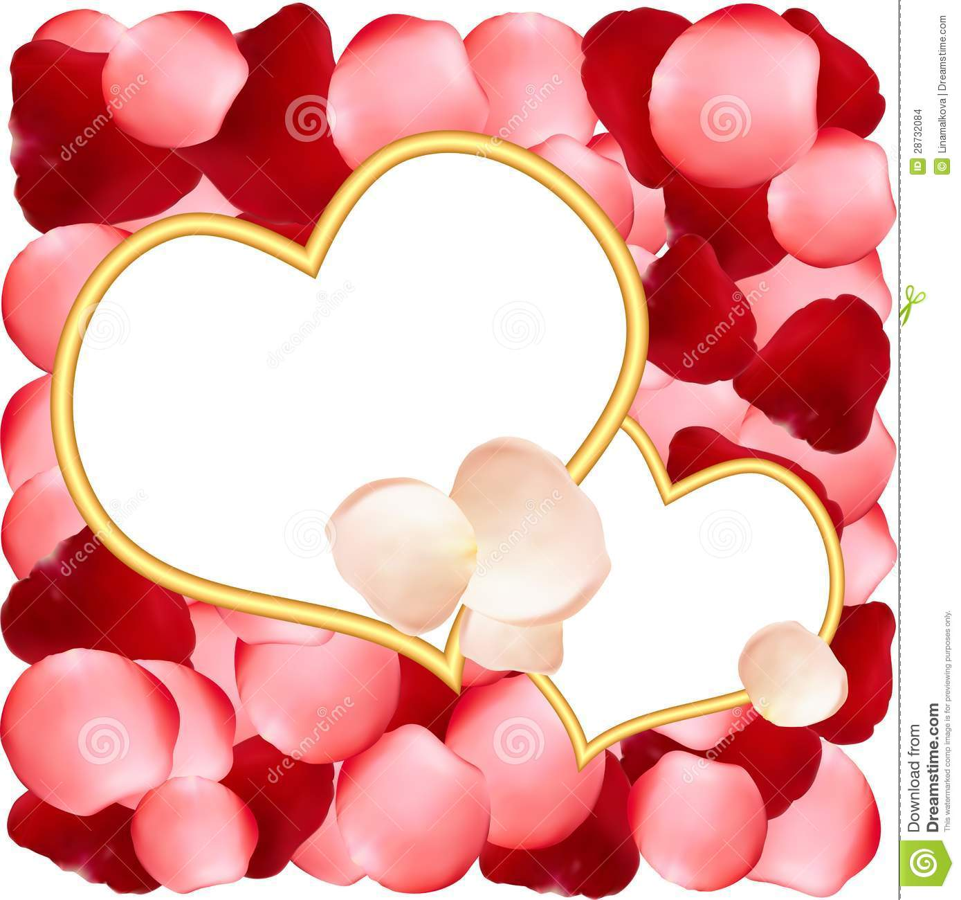 heart shaped frames on background of rose petals stock images