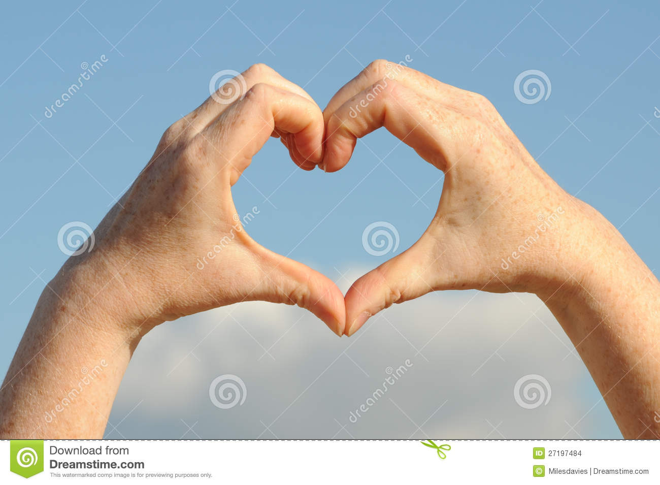The form of heart shaped by female hands on a white background ...