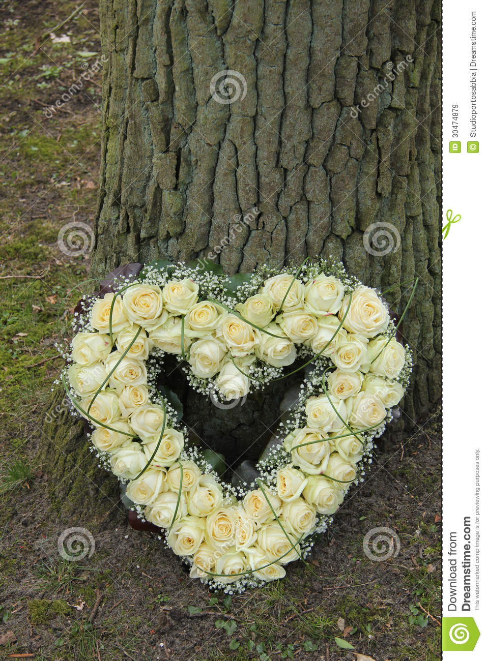 Heart shaped sympathy flowers stock image image of sympathy tree heart shaped sympathy flowers izmirmasajfo Gallery