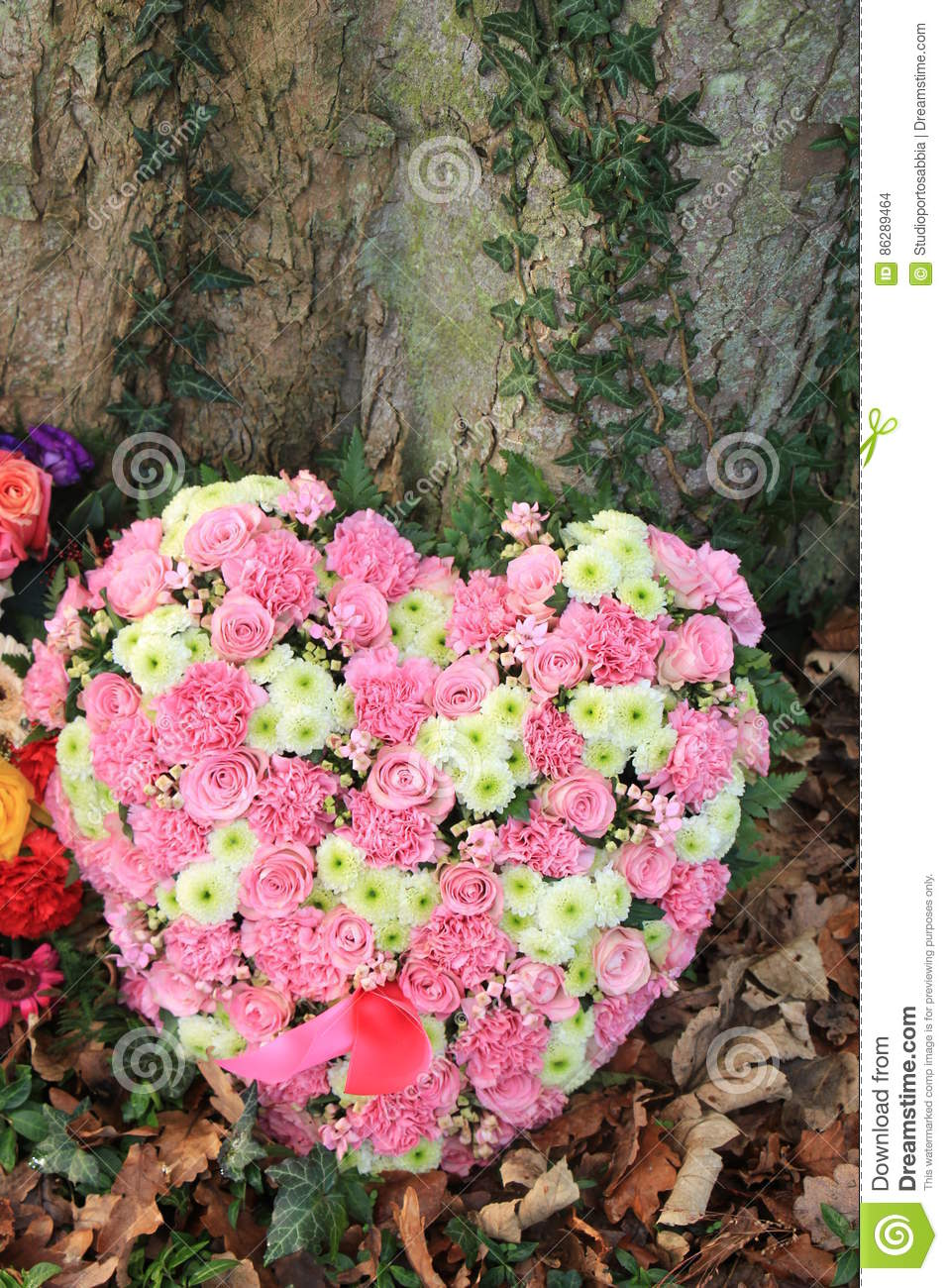 Heart shaped sympathy flowers stock photo image of funeral download heart shaped sympathy flowers stock photo image of funeral cemetery 86289464 izmirmasajfo