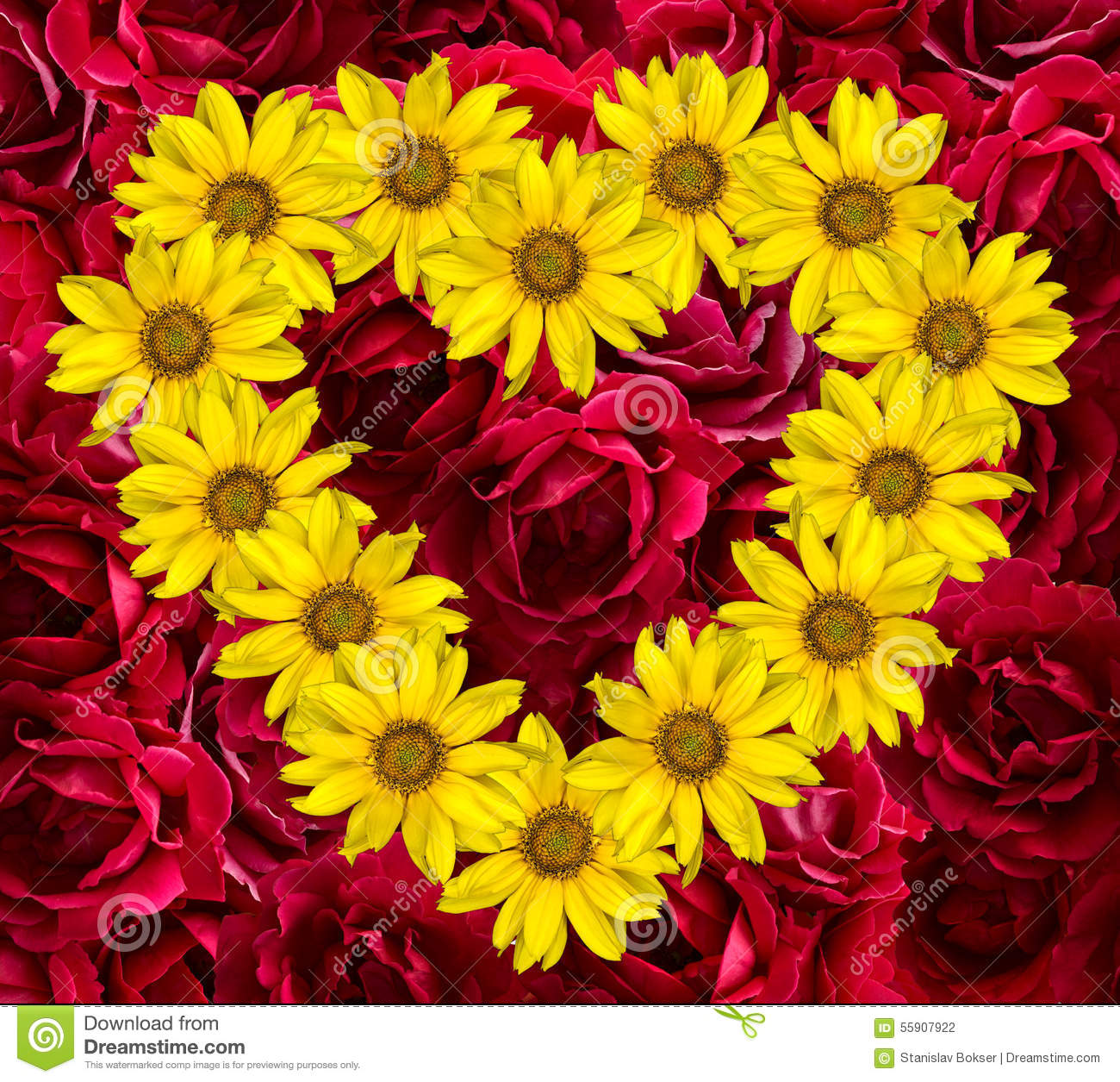 Heart of yellow flowers of decorative sunflowers Helinthus and red rose
