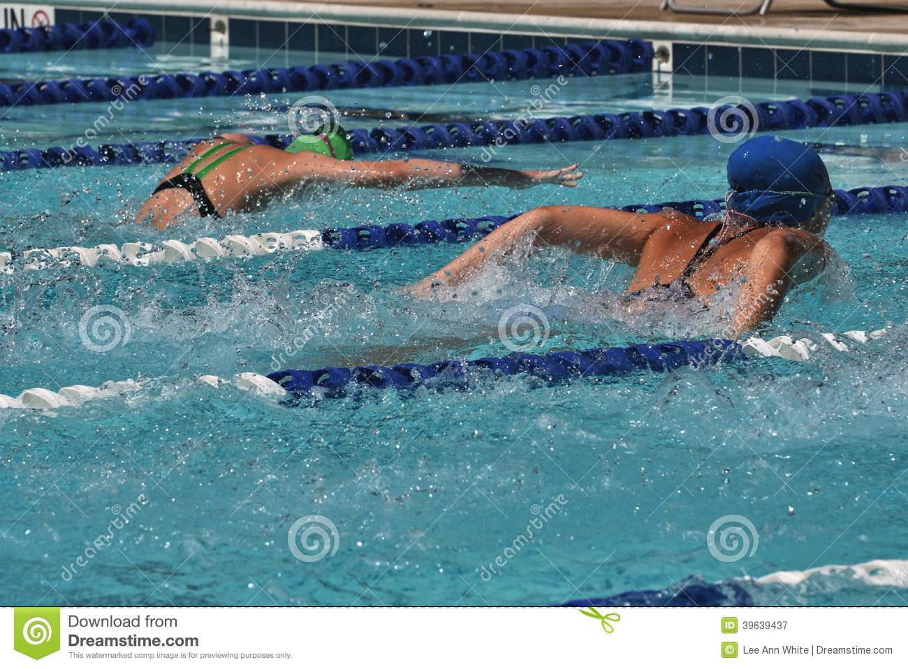 A Heat Of Butterfly Swimmers Racing At A Swim Meet Stock