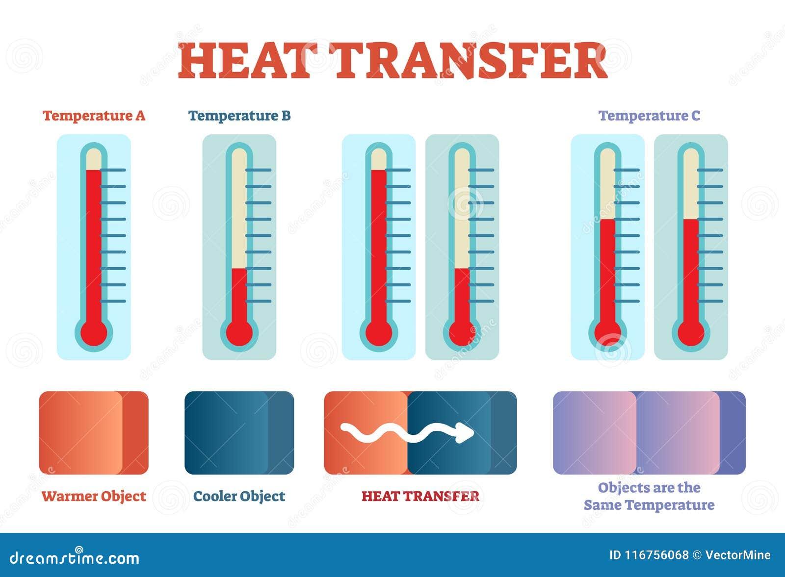 Heat Transfer Physics Poster  Vector Illustration Diagram